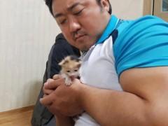 马东石抱小奶猫合照  展「铁汉柔情」竟吓坏网友:小心不要捏爆他!